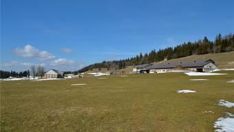 Ob der Windpark dereinst die Idylle auf dem Obergrenchenberg zerstört oder den Publikumsverkehr vermehrt, wird sich erst zeigen - sofern er gebaut wird.