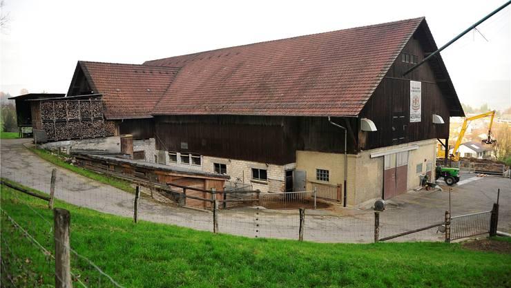 Eine abgespeckte, kostengünstigere Variante des Siegerprojekts «Gradatus» soll laut der Planungskommission an die Stelle des alten Viehstalls treten.