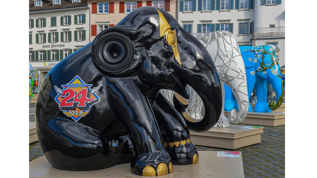 Treffe den Radio 24 - Elefanten