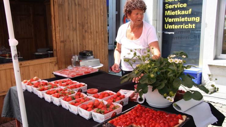 Im Reich der Erdbeeren