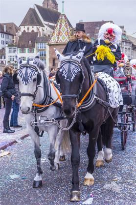 Pferde werden am Cortège neu von Tierärzten untersucht. Für die Teilnahmemüssen sie im Vorfeld der Fasnacht neue Auflagen erfüllen.KobbyDagan/Shutterstock