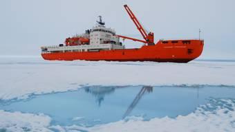 Die Akademik Treshnikov hat bereits bei der Antarktis-Umrundung gute Dienste geleistet. Auch bei der Grönland-Umrundung wird sie im Einsatz sein.