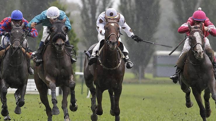 Nach einem Pferdesportanlass des Nationalen Pferdezentrums in Bern ist eine Person positiv auf das Coronavirus getestet worden. (Themenbild)