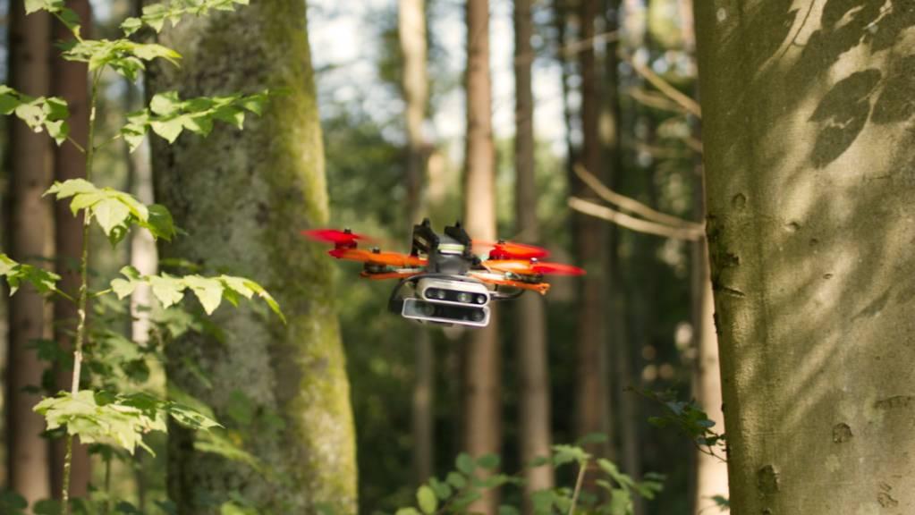 Zürcher Forschende entwickelten einen Ansatz, dank dem eine Drohne selbstständig mit hoher Geschwindigkeit durch unbekanntes Gelände navigieren kann, beispielsweise durch einen dichten Wald.