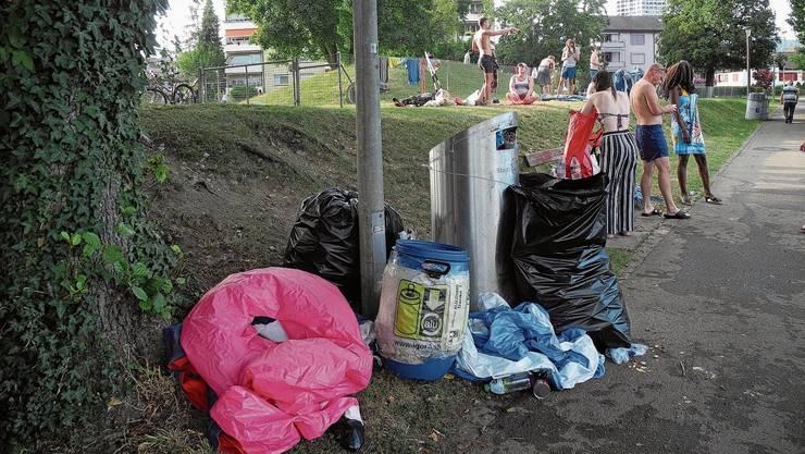 Abfall, Abfall, Abfall: Die Stadt Dietikon räumt seit Jahren auf der Nötzliwiese auf.