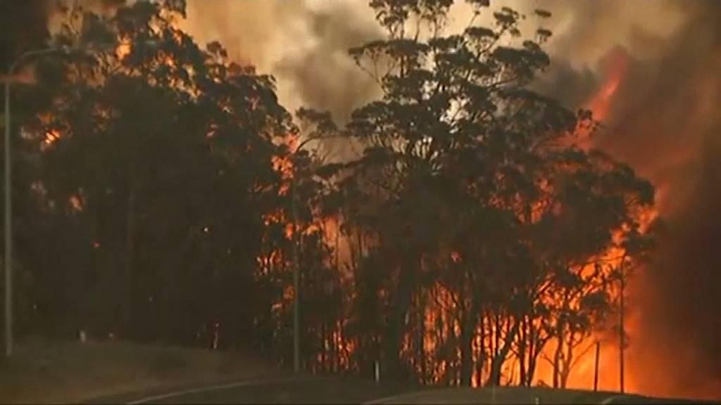 Australische Buschbrände breiten sich weiter aus