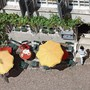 Auch die Genossenschaft Baseltor leidet darunter, dass viele Stühle noch leer bleiben müssen.