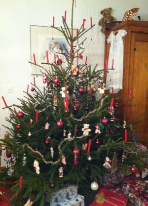Weihnachtsbaum von Regula Adam aus Zuchwil