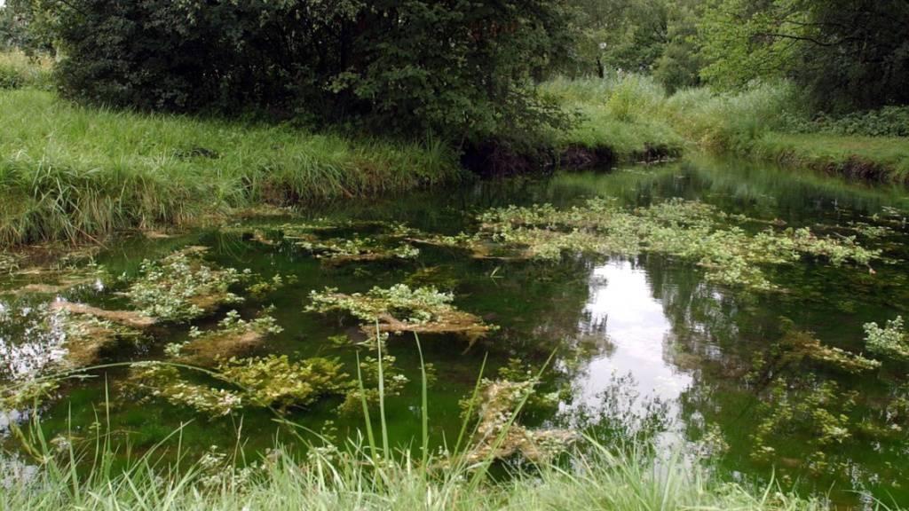 St.Galler Grundwasser fast Chlorothalonil-frei