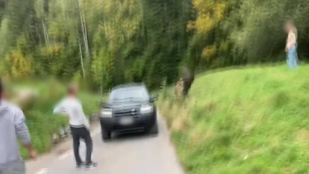 «Aus fahrendem Auto» Teufner Jäger erschiesst Fuchs
