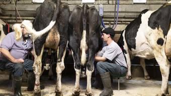 Bauern im Greyerzerland. Die Agrarpolitik 2022+ des Bundesrats stösst auf geteiltes Echo. (Archibvild)