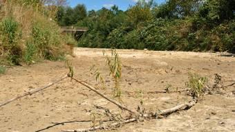 Trockenheit und Hitze im Aargau: Die trockene Sissle im Fricktal