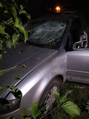Das Auto kam an einem Baum zum Stillstand.