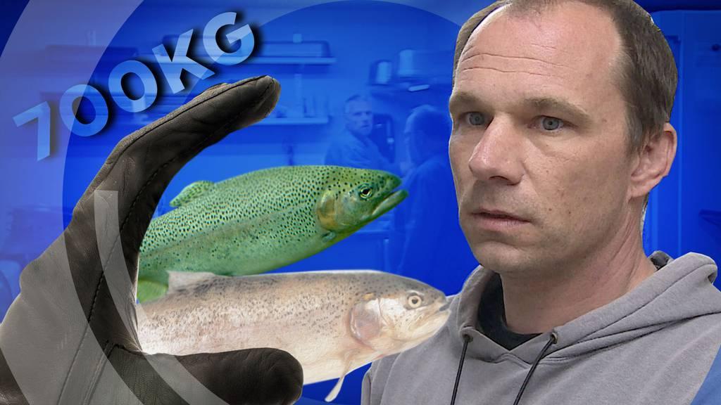 Fischdiebe