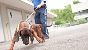 Personensuchhund Xaro hat die Polizei zur Vermissten geführt.