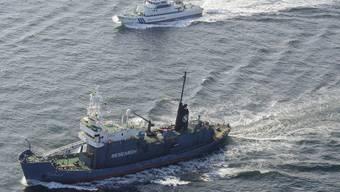Ein japanisches Walfangschiff sticht eskortiert von der Küstenwache in See (Archiv)
