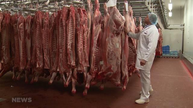 Schweizer Bauern fordern sofortigen Importstopp von Rindfleisch