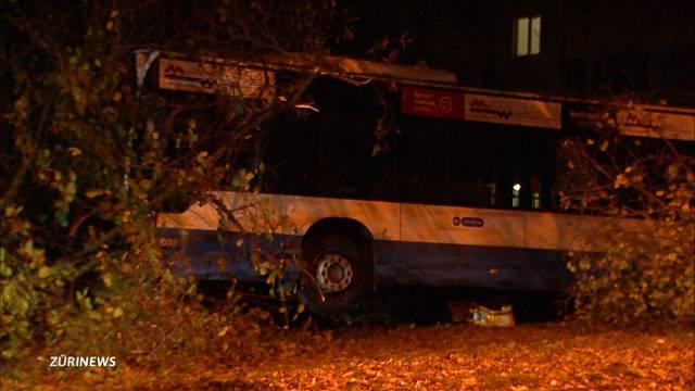 Linienbus fährt gegen Baum
