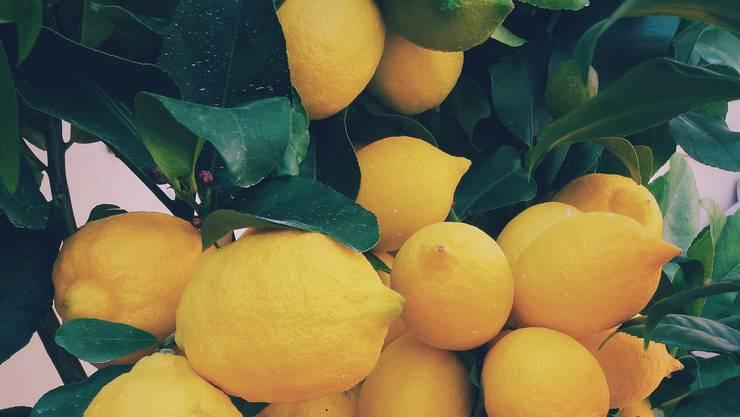 Zitrusfrüchte sind die bekanntesten Vitamin-C-Lieferanten. Wer also z.B. Broccoli mit Zitronen geniesst, ist schon sehr gut versorgt.