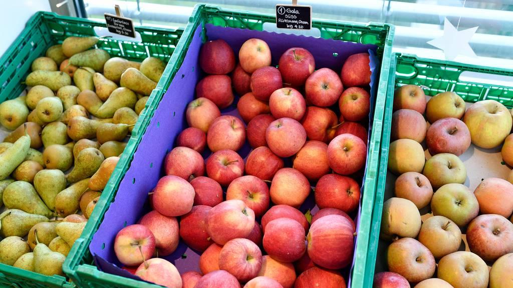 Schweizer Apfel- und Birnenernte beginnt verspätet
