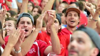 Nach der WM 2018 dürfen nun diverse Hilfsorganisationen jubeln – sie erhalten den Gewinn eines Luzerner Public Viewings als Spende. (Symbolbild)