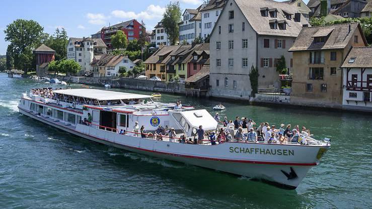 29-jährige Taucherin starb nach Zusammenprall mit Kursschiff