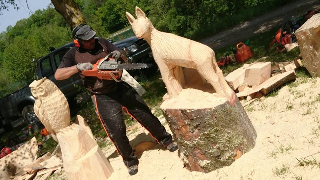 Impressionen vom Holzerwettbewerb in Bad Zurzach