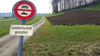 Die Zufahrt zu einer künftigen Deponie Höll würde ab der Kantonsstrasse Wohlen–Muri erfolgen. Archiv/Eddy Schambron