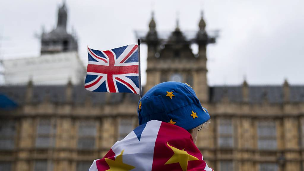 Anti-Brexit-Demonstrant vor dem Parlamentsgebäude im Zentrum Londons.