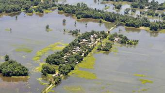 Überschwemmtes Gebiet im Bundesstaat Assam