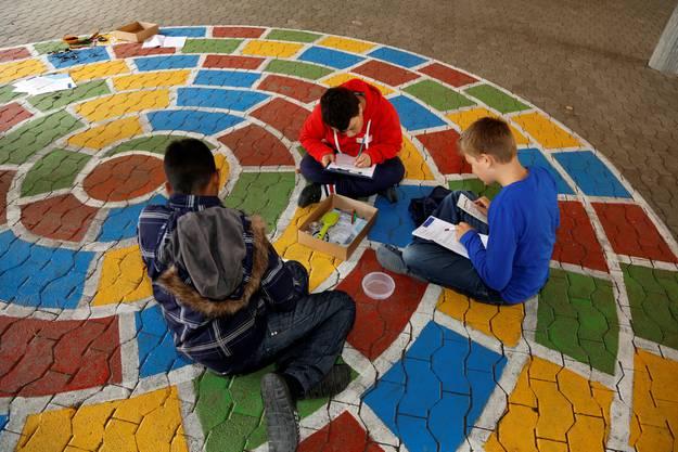 Die Schüler dokumentieren die Ergebnisse ihrer Forschung