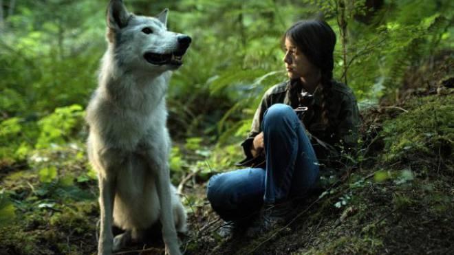 Shana allein im Wald mit dem geheimnisvollen Wolf, der auftaucht, wenn sie Geige spielt. Foto: Filmcoopi