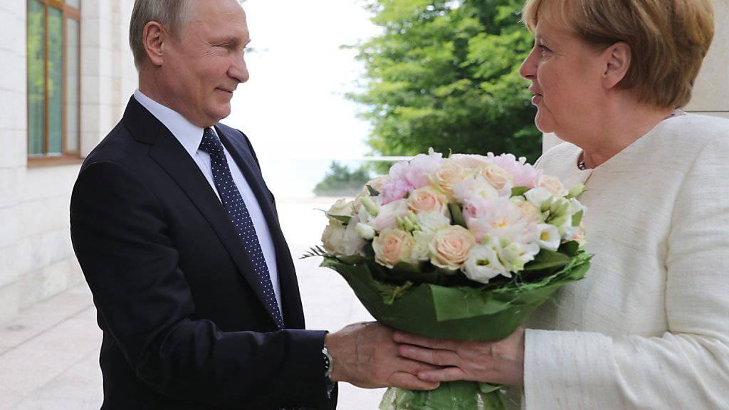 Blumen für den hohen Gast aus Deutschland: Russlands Präsident Putin empfängt Bundeskanzlerin Merkel in seiner Schwarzmeer-Residenz in Sotschi.