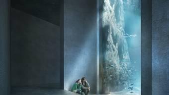 Offener Ozean Aquarium