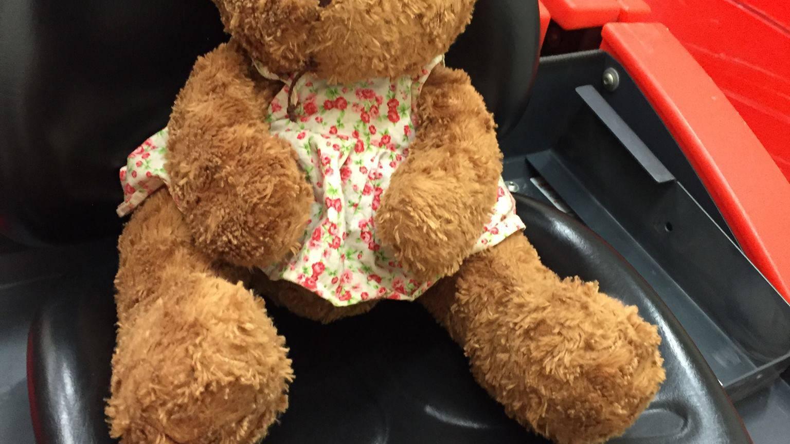 Der Besitzer oder die Besitzerin dieses Teddys wird gesucht.