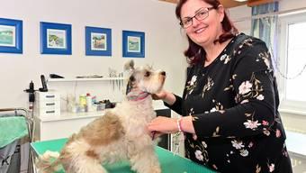 Sibille Turatto mit ihrem Hund Pippa im Hundesalon in Schönenwerd: «Hundecoiffeuse ist ein Traumberuf.»