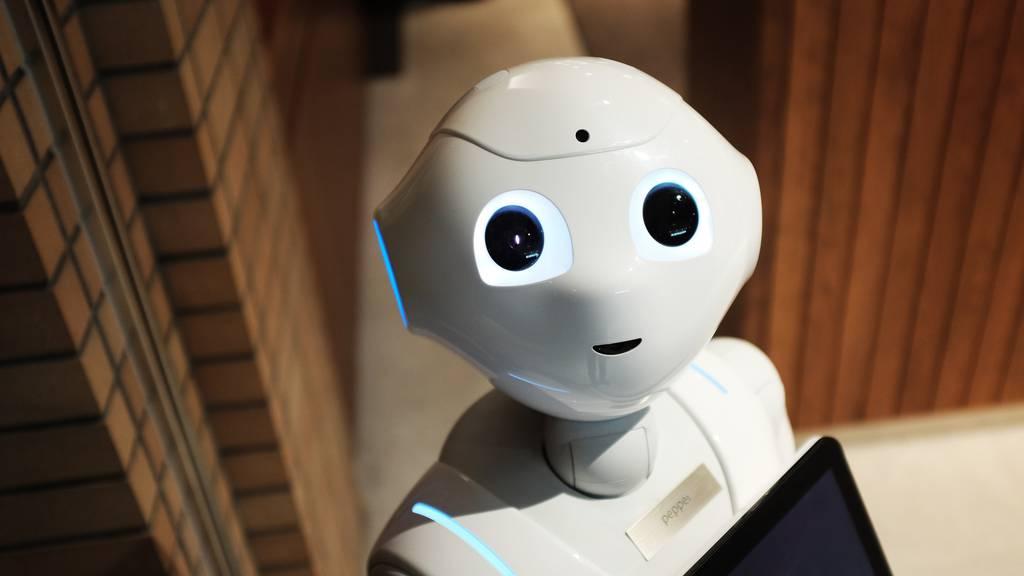 Sind Roboter die Zukunft?