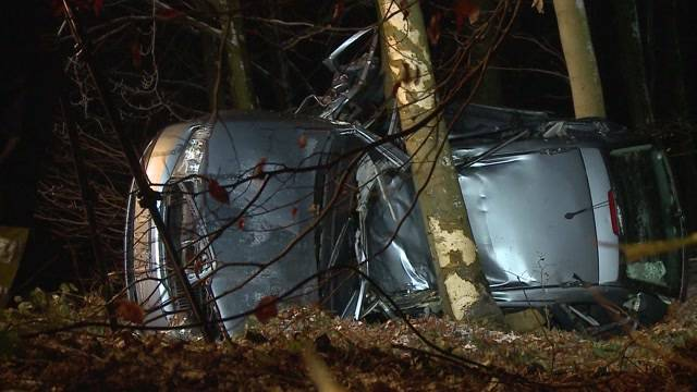 Auto zerknautscht an Baum