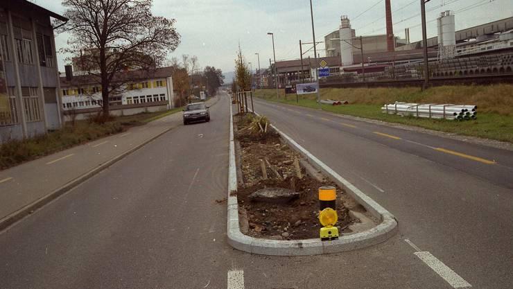 Trostlos : Ein Automobilist hat auf der Aarauerstrasse die Bäume kurzerhand «wegrasiert». (HF)