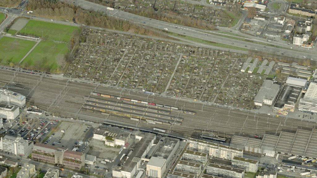 Vom Stadionneubau in Zürich-Altstetten sind 120 Schrebergärten betroffen. Der Stadtrat will Ersatzgärten anbieten.