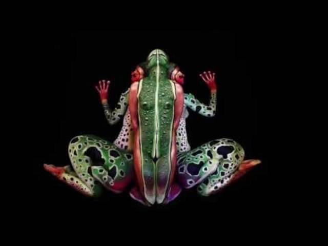 Der Frosch.