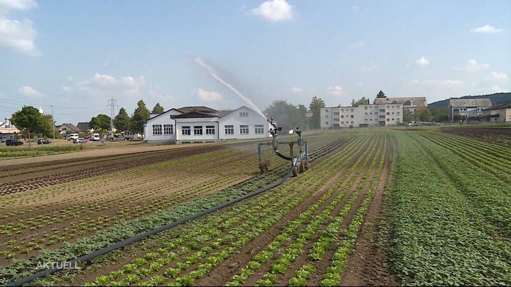 Bauern wollen Grundwasser anzapfen