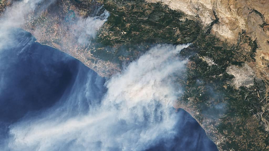 Feuersbrünste wüten in Mittelmeerländern - Weiter höchste Brandgefahr