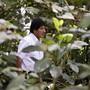 Evo Morales peilt eine weitere Amtszeit als bolivianischer Präsident an.
