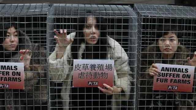 Peta-Aktivistinnen demonstrieren in Hongkong (Archiv)