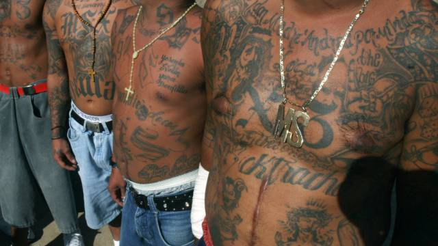 Inhaftierte Mitglieder der Bande Mara Salvatrucha (Archiv)