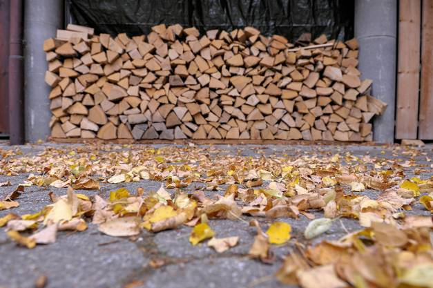 Holzstapel in Allschwil.