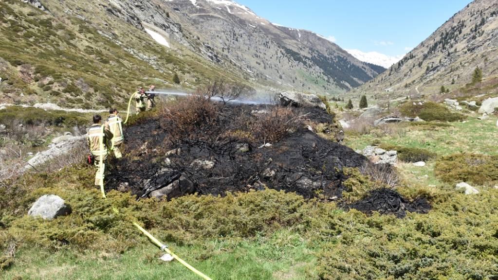 Ein nicht korrekt gelöschtes Grillfeuer löste im Val Medel einen kleinen Flurbrand aus. Die Feuerwehr konnte den Brand rasch löschen.