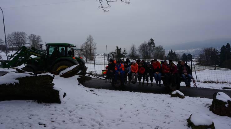 Der Traktor mit Anhänger fährt hinauf zum Sparrenberger Hau im Gubristwald zum Holzsammeln.