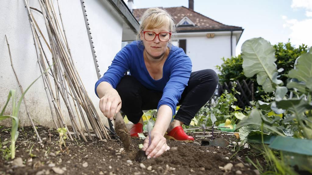 Deinen eigenen Garten anlegen – auch auf dem Balkon